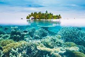 Bestselling Maldives Honeymoon Tour Package
