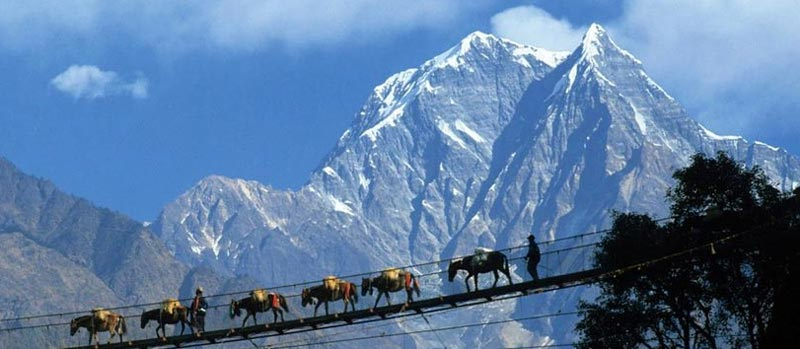 Leisurely North East with Pelling Tour