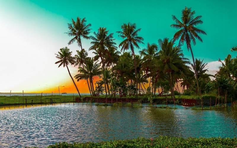 Treasures of Kerala5 Days & 4 Nights Tour