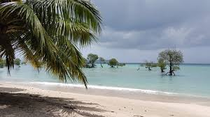 Explore Andaman 8 Days Tour
