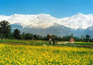 Amazing Himachal with Chandigarh Tour
