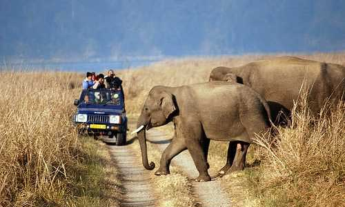 Nainital and Jim Corbett Tour Package