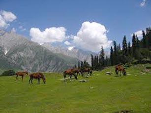 Srinagar Tour Package (05 Night / 06 Days)