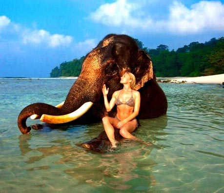 Most Beautiful Elephant Beach