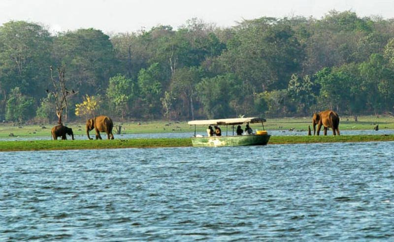Beautiful Kabini Tour