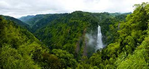 Jog Falls Trip from Bangalore Tour