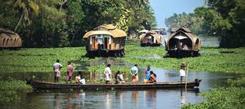 Kerala Backwater Tour in Alleppey