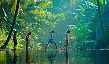 Best of Kerala with Tree house Stay Tour