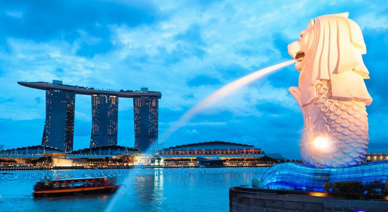 Singapore Tour With Cruise