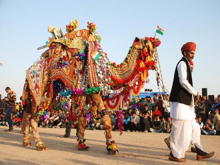 Rajasthan Joy Tour