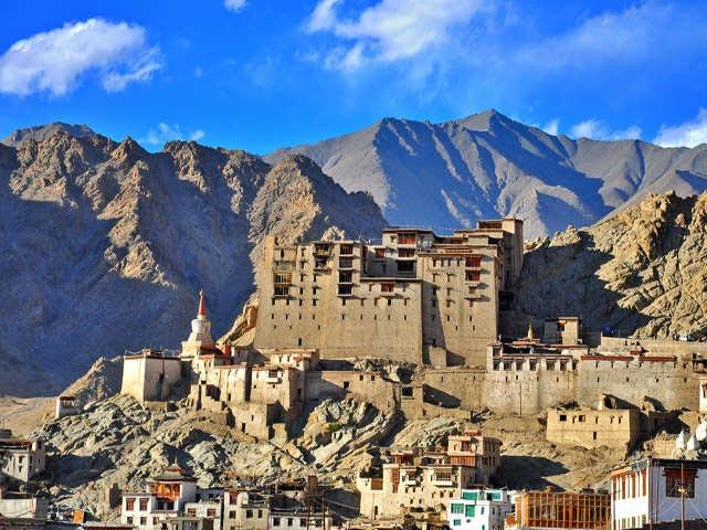 Snow Leopard Trek Ladakh India