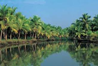 Kerala 5N – 6D Tour