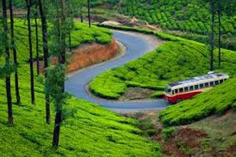 Kerala Munnar Travel Guide Tour