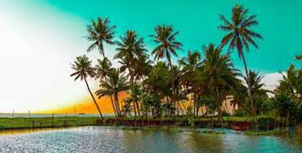 Amazing Tour of Kerala