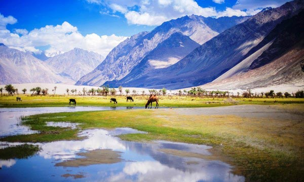 Inside Leh And Ladakh : Photography Tour