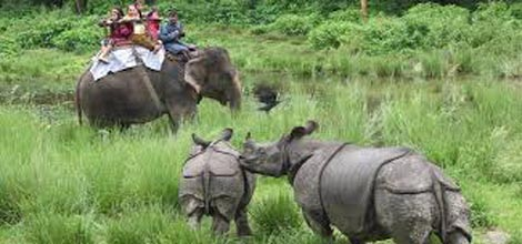 07 Nights / 08 Days Kathmandu, Pokhara & Chitwan Surface package