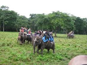 05 Nights / 06 Days 3 nights Kathmandu and 2 nights Chitwan Tour