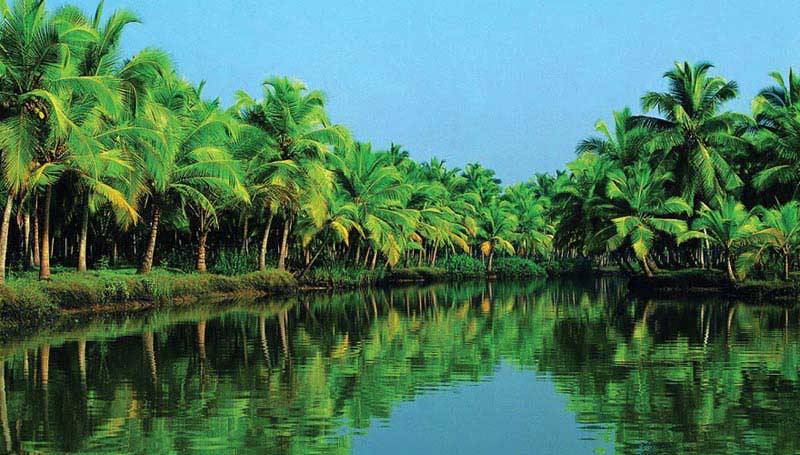 Splendors of Kerala Tour