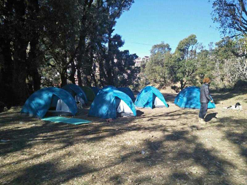 Camping In Meclodganj Tour