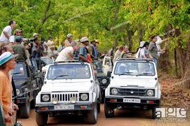 Kanha Tour Package from Gondia