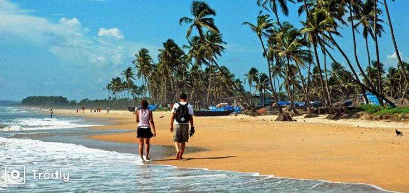 3 Nights & 4 Days Best of Goa Package for Honeymooners