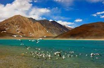 Best of Ladakh 5N-6D Package