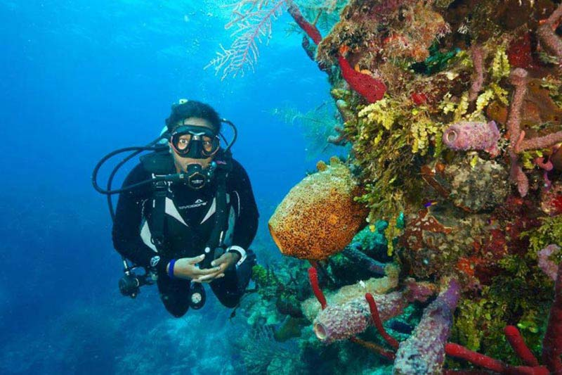 Scuba Diving 3 Nights Tour