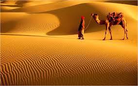 Thar Desert Bishnoi Khichan Tour