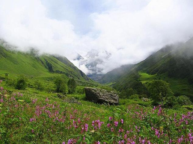 Valley Of Flowers Trekking Tours Package