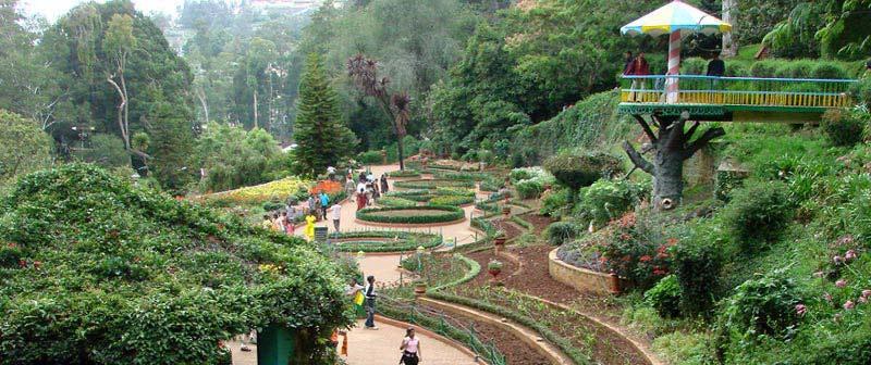 Mysore - Ooty - Coonoor Tour