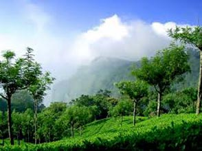 Ooty - Coonoor- Blackthunder Package
