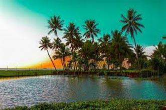 Thekkady - Munnar Tour