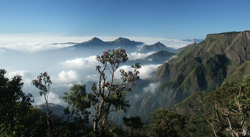 Just Kodaikanal Tour 5 Day