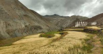 4 Days Ladakh Trekking Tour