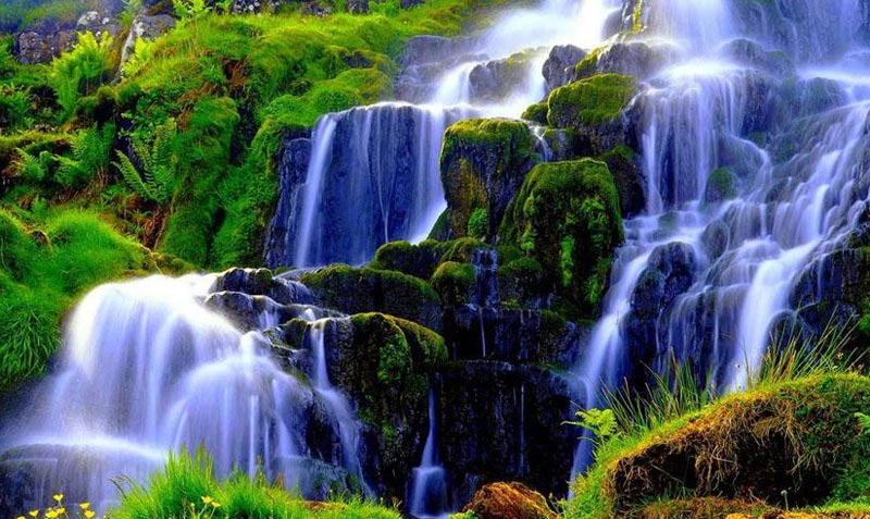 Coorg 2Night 3 Days Package