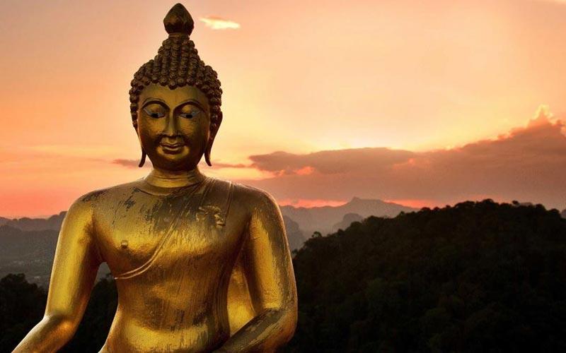 India Budhist Tour