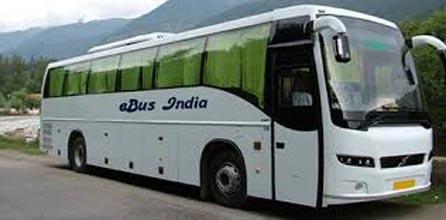 Volvo Tour Manali