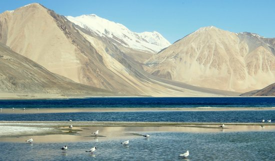 Ladakh Tour Ex Manali – Code: Harsh F
