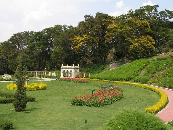 A Tour to Bandipur National Park Tour