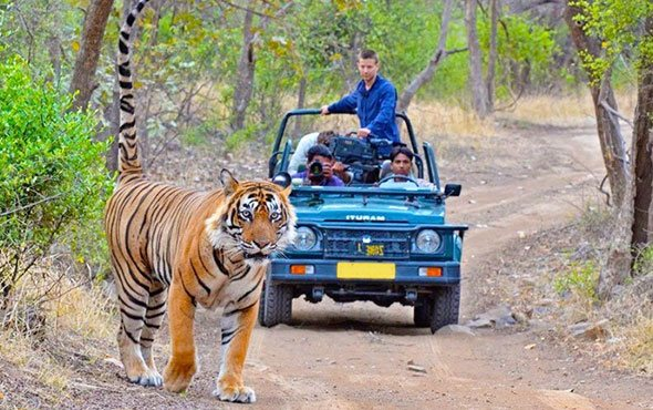 Charismatic Uttarakhand Tour