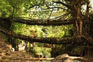 An Amazing Meghalaya Tour Package