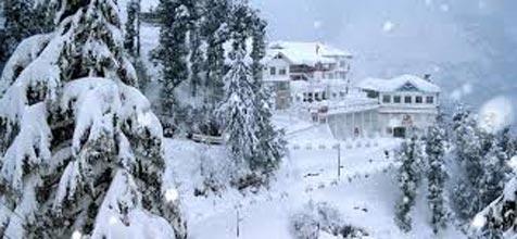 Amazing Shimla Package 03N/04D