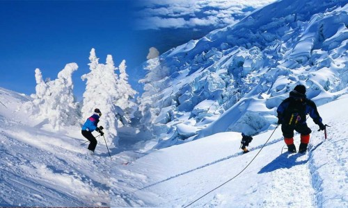 Chandigarh - Manali - Kullu Tour