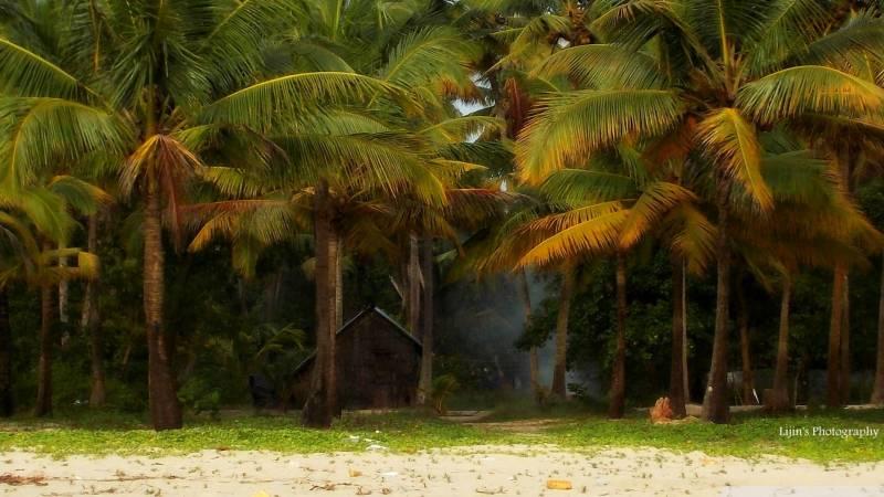 Paradise Kerala Tour