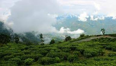 Bara Mangwa-Tinchuley Sikkim Tour