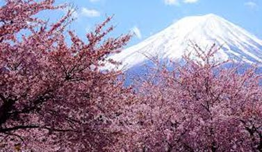 Splendid Japan Tour