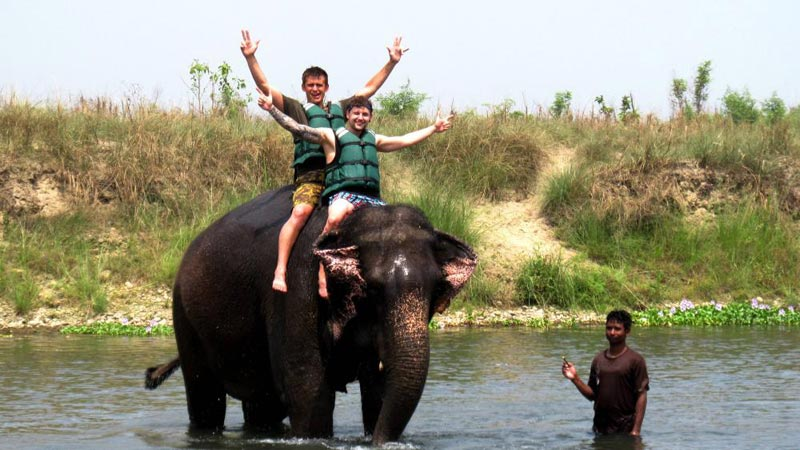 Chitwan Trip Package