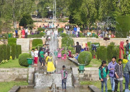 7 Nights  8 Days Kashmir Luxury Package