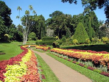 Botinical Gardens