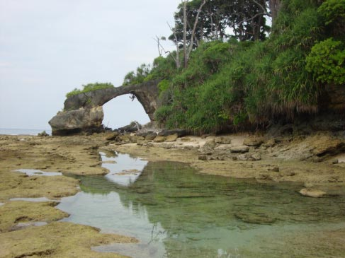 Experience Neil Island to Port Blair Cite Tour Trip 6days - 5 Night Tour